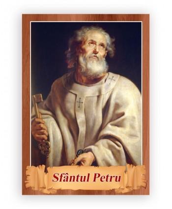 Icoană plastifiată Sfântul...